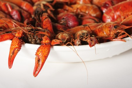 boiled crayfish 2